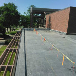 Commercial roof - Wayne State